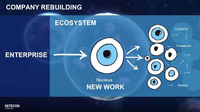 The Ecosystem of Company ReBuilding